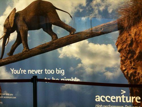 Accenture_heffalump